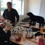 Regroupement stagiaires de la formation Auxiliaire vétérinaire